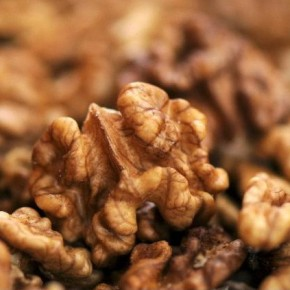 Грецкий орех: за и против