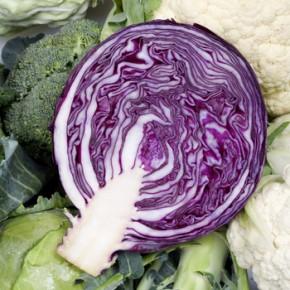 Фиолетовая капуста помогает бороться со старостью