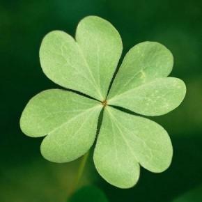 Как привлечь удачу в жизнь