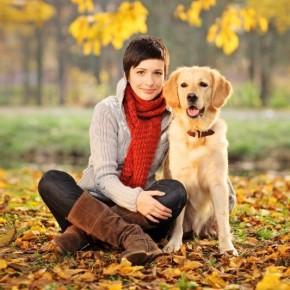 5 основных правил воспитания умной собаки