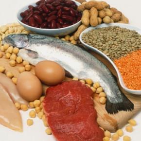 Белки. Общие сведения, потребность организма в белке. Дефицит и избыток его в организме