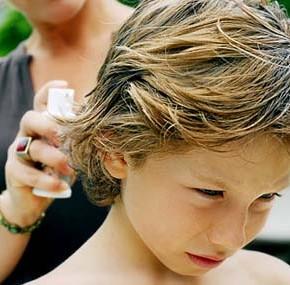 Почему ребенок часто чешет голову или как избежать педикулеза?