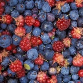 Что мы не знали о витамине Р (флавоноиды)