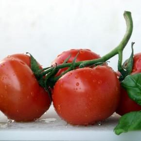 Дополнительный источник витаминов и минеральных солей