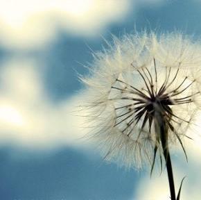 30 полезных советов: как вернуть своей жизни былую простоту и лёгкость