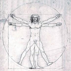 Бесполезные органы у человека