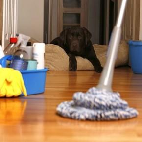 12 шагов в уборке дома к Новому году