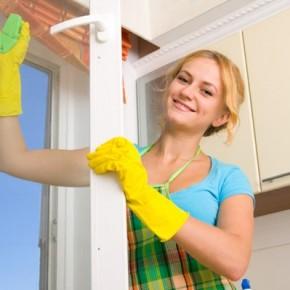 7 советов по мытью стекол домашними экологическими средствами. Долой химию