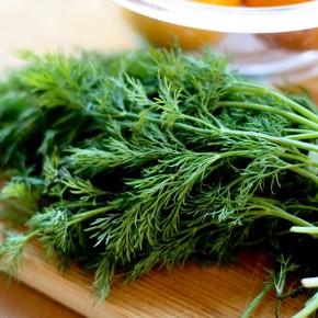Запах лета и свежего салатика