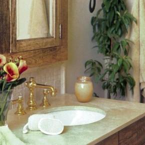 Какие комнатные растения идеально подходят для ванной комнаты?