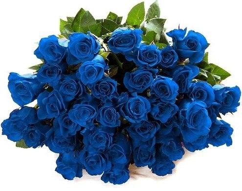 Как сделать цветы синими