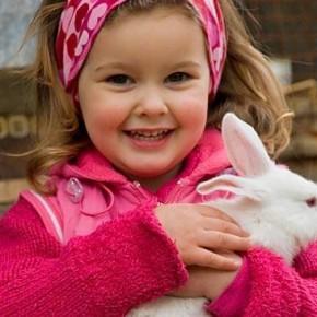 Как выбрать домашнего питомца для ребенка?