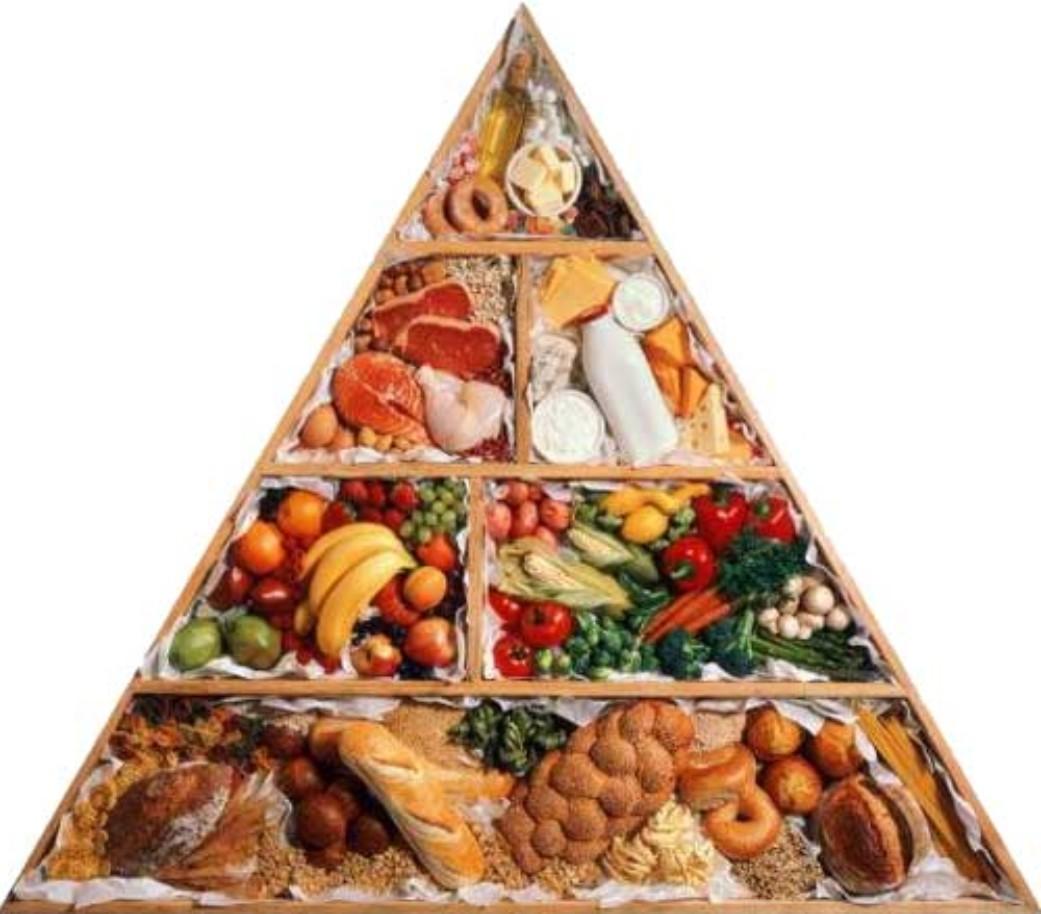 раздельное питание для похудения отзывы малышевой