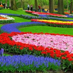 Кёкенхоф - Сад Европы