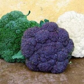 Брокколи - полезные свойства и правильное выращивание