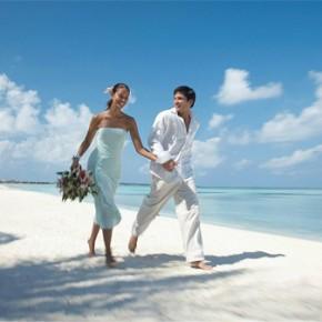 Любовь в кадре или свадебная фотосъемка